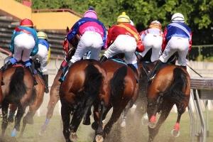 horse-racing-2357030_1280.jpg
