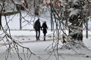 winter-4705390_1920.jpg